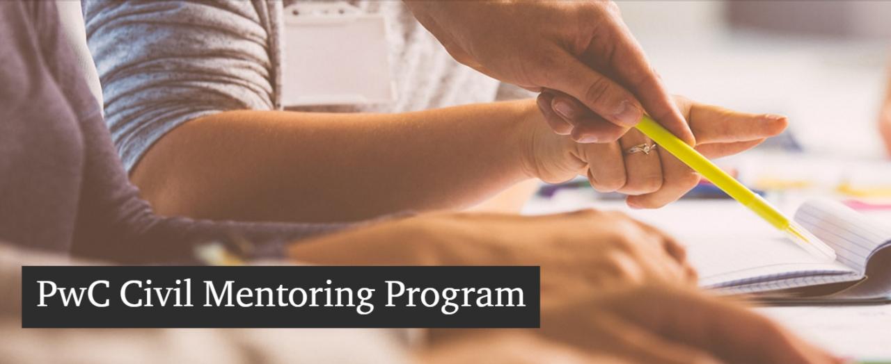 Bekerült a TIA a PwC Civil Mentoring Programjába
